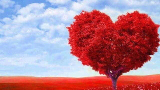 sevgiler-gunu-hediyeleri