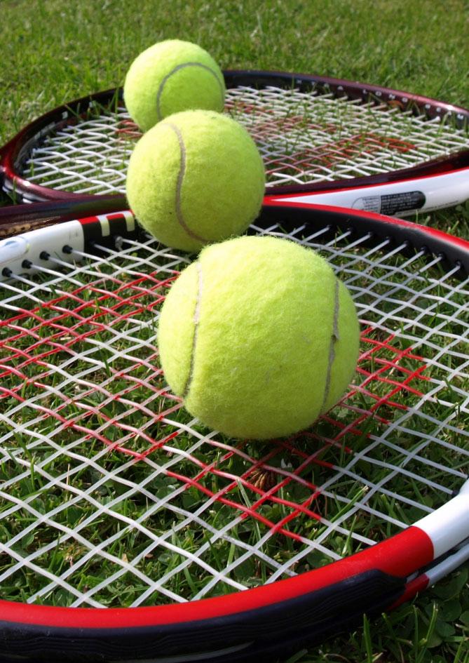 wilson-tenis-topu