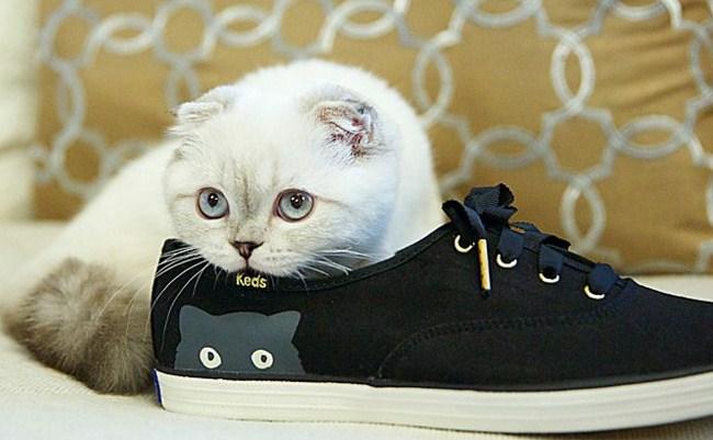 siyah-keds-ayakkabi